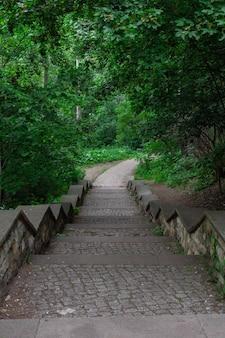 ベルリンのフォルクスパークフリードリッヒスハイン公園、石の階段で暖かい晴れた日に歩く