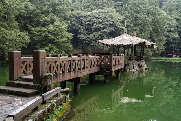 The walk way go to pavilion at alishan national park area in taiwan.