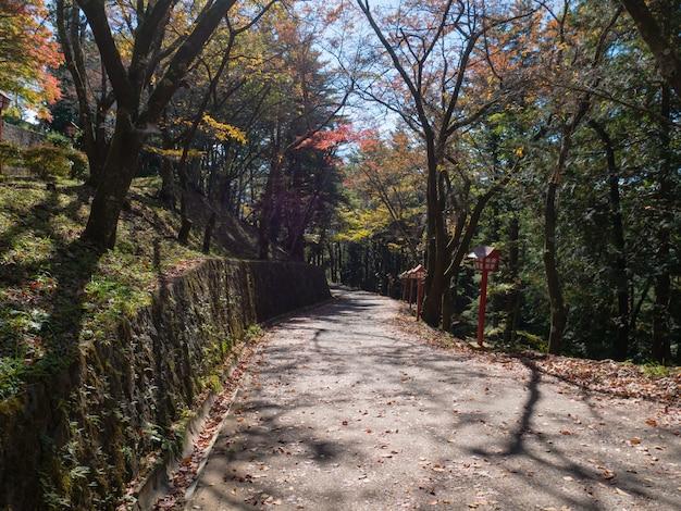 Walk way near arakura sengen shrine