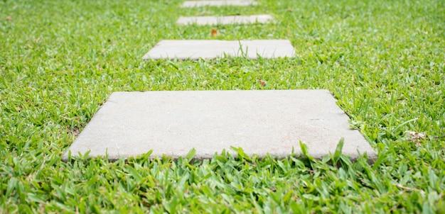 芝生の上を歩く
