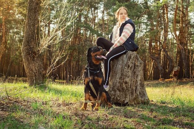 針葉樹林で犬を散歩。晴れた日、針葉樹林で犬と一緒に散歩。犬の男の親友