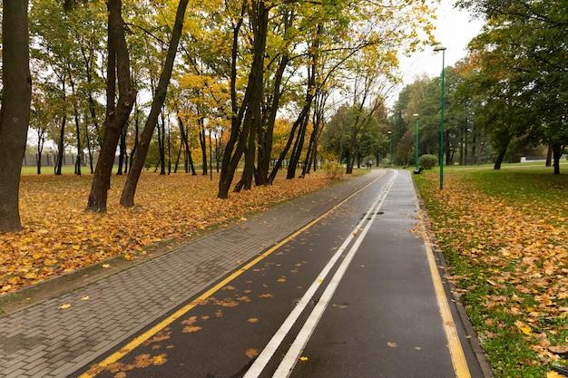 가을 공원에서 산책과 자전거 경로.