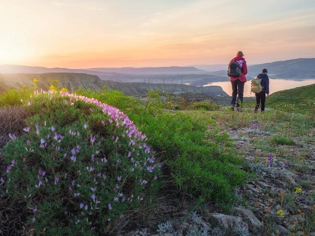 早朝の山脈のウォーキングやハイキングコース。女性のバックパッカーの観光客のハイキング。