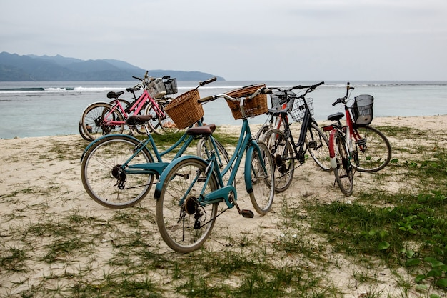 Walking bikes parked on the shore.