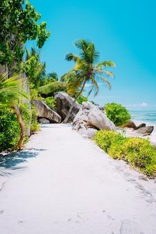 Пешеходная дорожка с пальмами на пляже анс-источник д'аржан, ла-диг, сейшельские острова