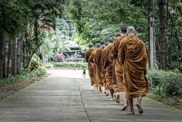 아침에 사원으로 걷는 승려