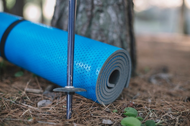 Walking stick and yoga mat in forest
