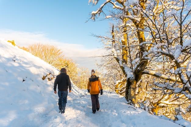 ギプスコアのペナスデアヤにあるオイアルツンの町にある雪に覆われたブナの森、オイアンレク自然公園に向かって歩きます。バスク