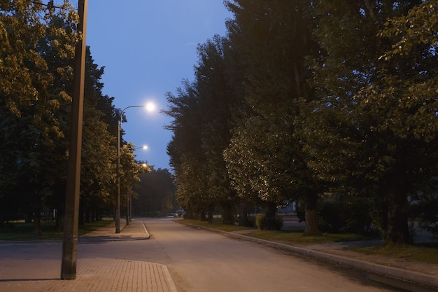 Walking trail in the evening summer park