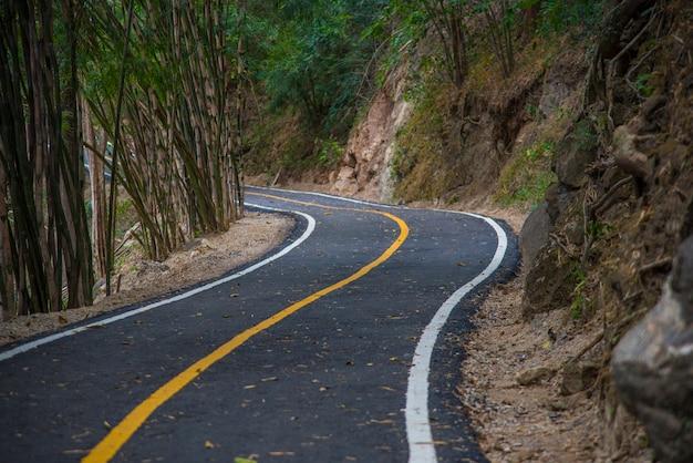 Пешеходная тропа в тропическом лесу
