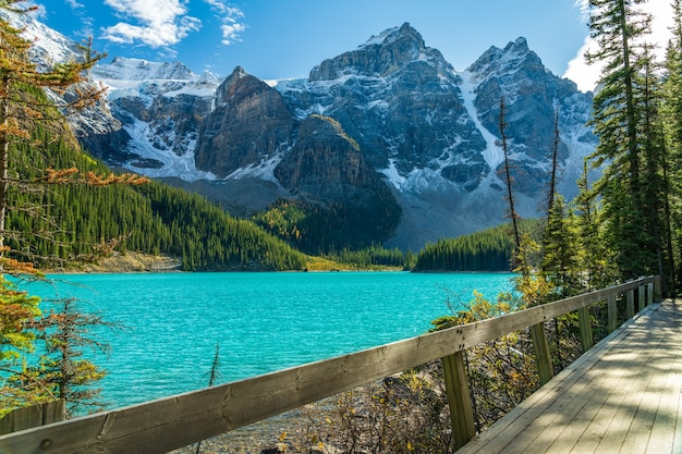 Walking trail on the lakeshore in the forest on a sunny day. moraine lake lakeside, banff national park, canadian rockies, alberta, canada.