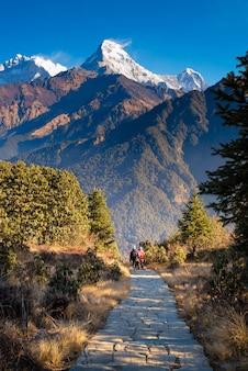 ネパールのプーンヒルビューポイントへのウォーキングトレイル。