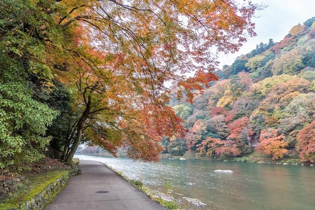 Walkway beside river in autumn at arashiyama, kyoto.