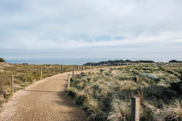 Walkway and field