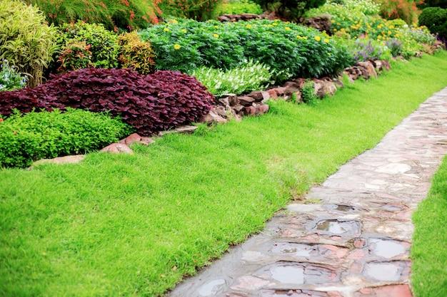 Walkway in garden.
