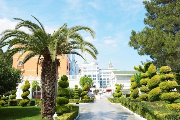 Дорожка в летнем парке с пальмами. амара дольче вита роскошный отель. курорт. текирова-кемер. турция