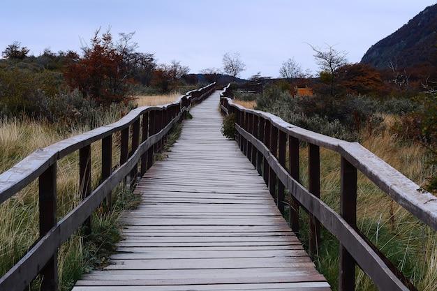 Walkway in national park, ushuaia.