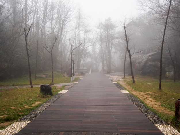 Walkway  in the thick fog and low light