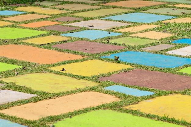 Дорожка с травой, растущей между красочными мощения.