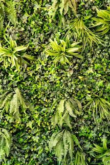 벽, 식물의 녹색 잎의 배경입니다. 인공 및 살아있는 식물에 의한 인테리어 디자인.