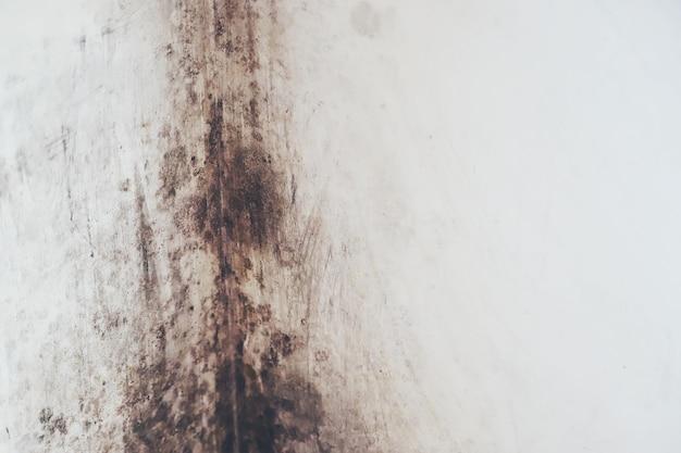 湿気とカビによって壁が黒くなった。セレクティブフォーカス。