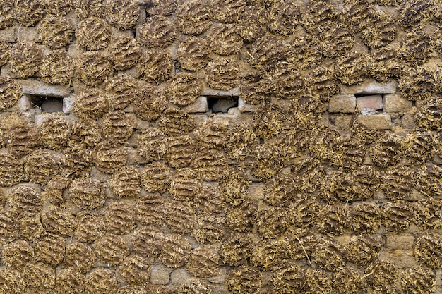 The wall of the house is made of dung in india background