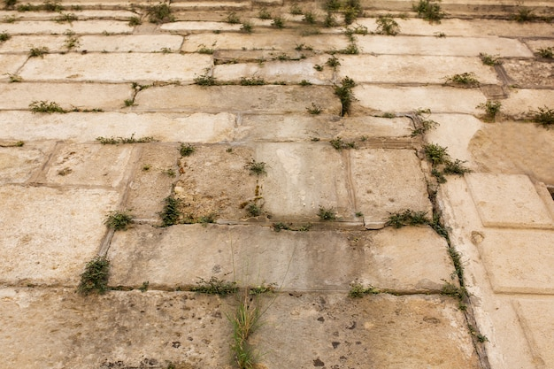古い石とその間に生えている草で舗装された壁。クローズアップショット