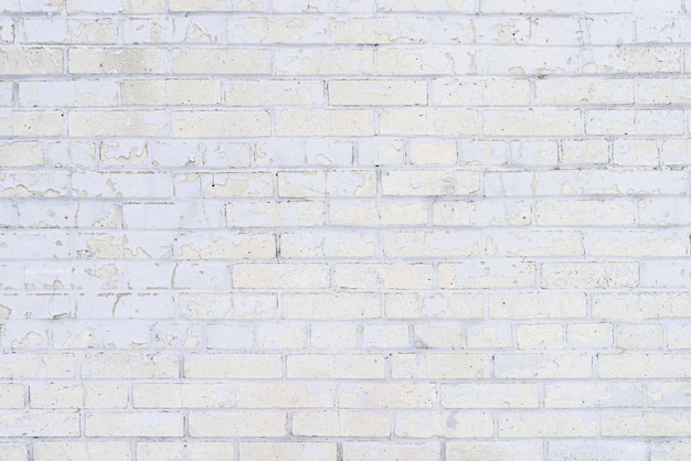 Struttura della superficie della parete