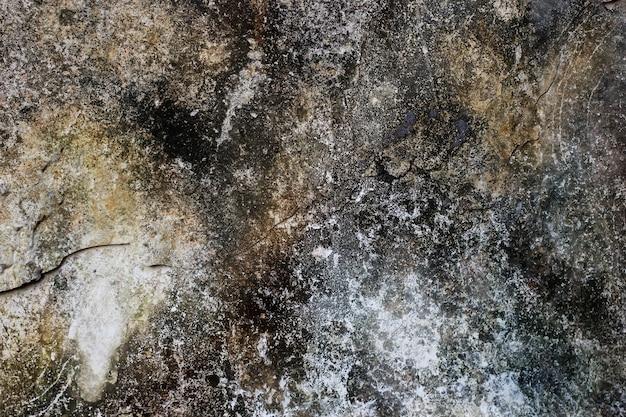Текстура стены с поврежденной краской, полной плесени