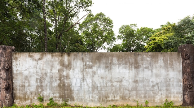 Wall with humid and ancient