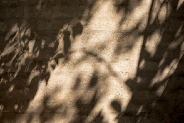 Wall with shadows and light gleam