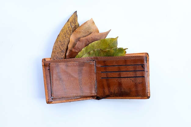 Wallet with dry leaves