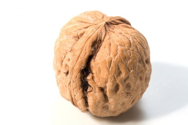 Walnut close up