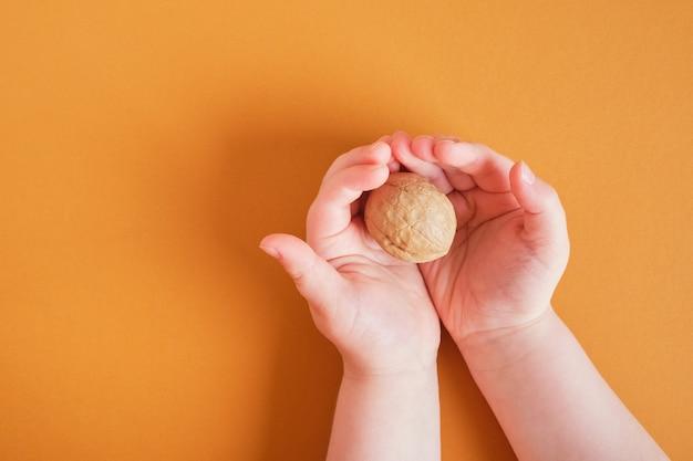 Грецкий орех в скорлупе в детских ладонях на коричневом фоне, копия пространства, вид сверху Premium Фотографии