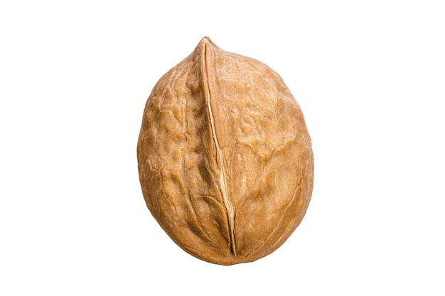 Walnut in shell isolated on white background. high quality photo