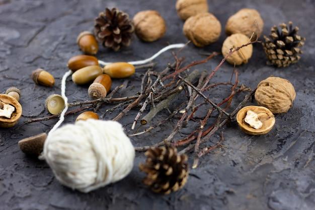 Walnuts, acorns on a beautiful background