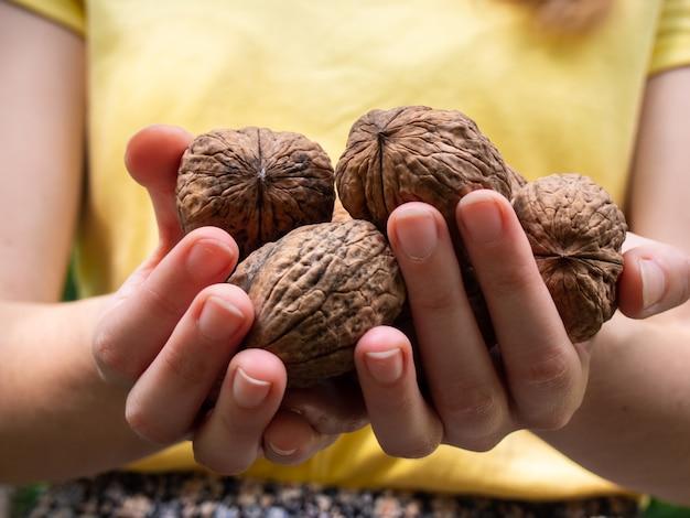Грецкие орехи в руках крупным планом.