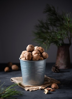 Walnuts in a metal jar on a dark background among green fir. front view