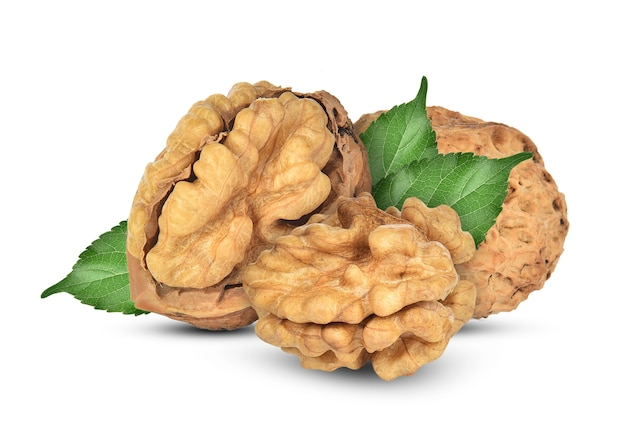 Walnuts with leaf isolated on white background