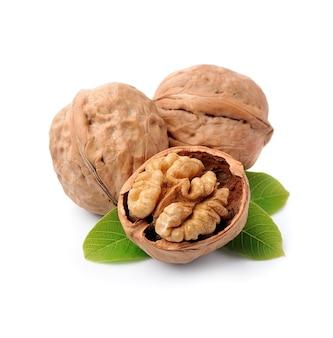 Грецкие орехи с листьями, изолированными на белках.