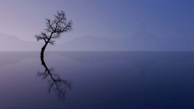 Wanaka tree with lake view