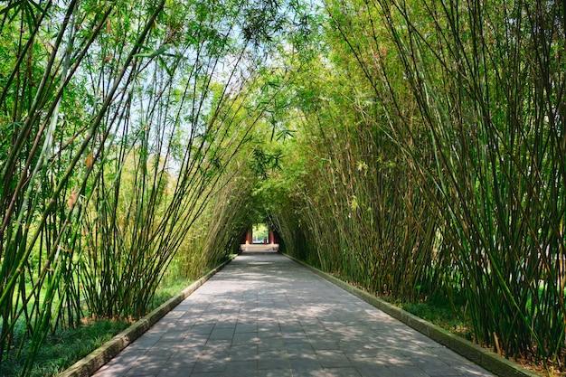 Парк ванцзянлоу. чэнду, сычуань, китай