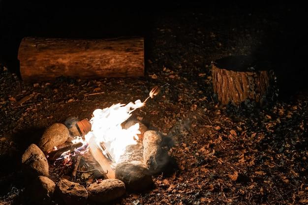Теплый и уютный костер в лесу. пруд костер на отдыхе во время кемпинга.