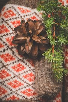 Теплый новогодний фон зимняя композиция вязаные варежки еловые ветки и шишки