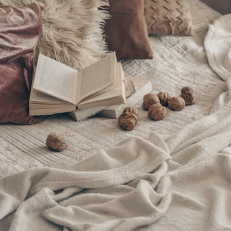 Warm interior of the living room with an open book with walnuts. read, rest. winter weekend concept. cozy autumn or winter concept.