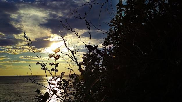 海沿いの暖かい夕日