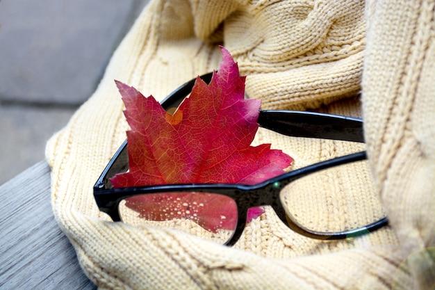 Теплый свитер и очки с осенним осенним листом, лежащим на скамейке