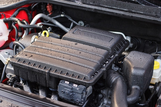 Washed car engine, the concept of care for the elements under the hood