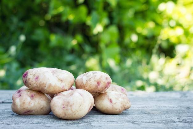 Washed young potatoes on wooden background, close-up