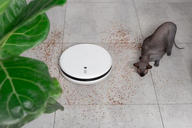 흰색 로봇 진공 청소기 장치는 부엌의 유토나이트 타일에 있는 부스러기 가루에서 바닥을 청소합니다. 재미있는 스핑크스 대머리 고양이.